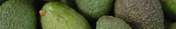 s8-ideas-aguacate