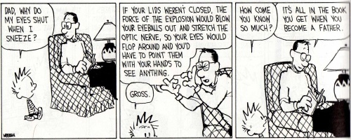 post-21446-Calvin-and-Hobbes-why-do-my-ey-xX7e